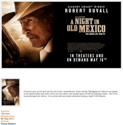 A Night in Old Mexico (2013) HDRip-divx