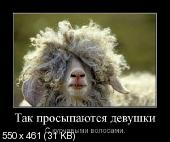 Демотиваторы '220V' 31.05.14
