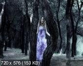 http://i64.fastpic.ru/thumb/2014/0621/30/8610458942c10f56397268d33aee5430.jpeg