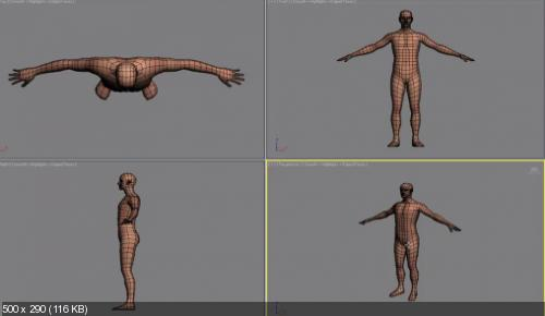 Skillfeed - Character Rigging with 3ds Max