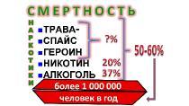 ������� �.�. - ������������ ���������� ����� ������������������ (2013) WEB-DL 720p