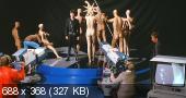 Поклонница / Фанатка / Der Fan (1982) DVDRip   Sub