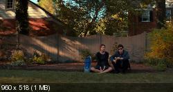 Виноваты звезды (2014) BDRip-AVC от HELLYWOOD {Расширенная версия | Лицензия}