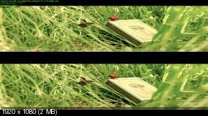 Букашки. Приключение в Долине муравьев в 3Д / Minuscule - La vallee des fourmis perdues 3D ( by Ash61) Вертикальная анаморфная