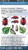 ЭкоГид: Насекомые-вредители. атлас-энциклопедия насекомых-вредителей лесных древесных пород России 1.0