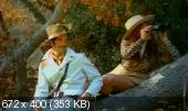 �������� ������� / Trader Hornee (1970) DVDRip | DVO
