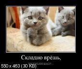Демотиваторы '220V' 28.11.14