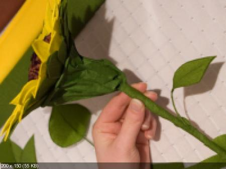 Цветы из гофрированой бумаги 05a6ac48b500387ac633e6ee2c298f07