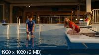История дельфина 2 / Dolphin Tale 2 (2014) BDRip 1080p   Лицензия