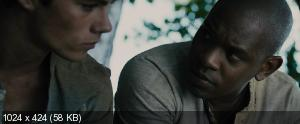 ������� � ��������� / The Maze Runner (2014) BDRip-AVC | 60 fps | ��������