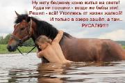 Позитивные котэ и их друзья (03.01.15)