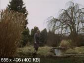 ������� ����� / The Turn of the Screw (1992) DVDRip | AVO
