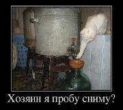 Демотиваторы '220V' 13.01.15