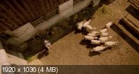 Волки / Wolves (2014) BDRip 1080p | DUB | Лицензия