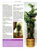 Комнатные и садовые растения от А до Я (№51 / 2015)