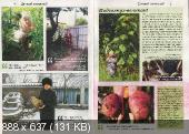 Садовод и огородник (№3, февраль / 2015)