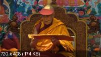 Учения Его Святейшества Далай-ламы для буддистов России (2014) DVDRip | VO