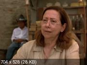 Центральный вокзал (1998) DVDRip