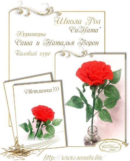 Школа Роз. Выпуск Базового курса 18df0fd7dc384a07f703e8e809daa848