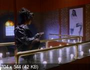 В постели с вампиром (1992) DVDRip