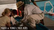 История дельфина (2011) / 2D, 3D / Blu-Ray Remux (1080p)